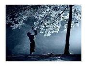 SPIRITUAL HEALER, REMOVE CURSE, RETURN LOVE ONE