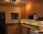 Professional Stain Kitchen Services Canada