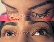 GTA Extensive Eyelash Extension Training