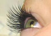 TOronto Eyelash training