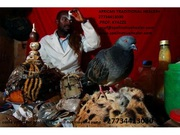 AWARD WINNER NO. 1 LOST LOVE SPELLS CASTER IN SOUTH AFRICA  2773441303