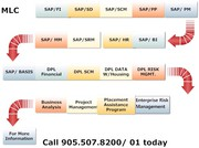 Project management & SAP Training