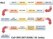 Project management & SAP Training