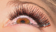 February 7 - Eyelash Extension Training