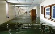 Flood Restoration Service in Toronto For To Avoid Related Infections