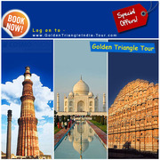 Get Brilliant Package for Golden Triangle Tour