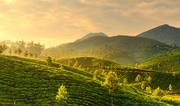 Enjoy Trekking at Kerala