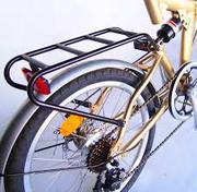 Carbon Folding Bike