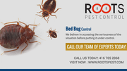 Bed Bug Control & Removal in Brampton | Roots Pest Control