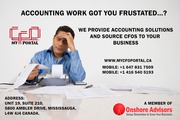 provide development services, virtual accounting & CFO services.