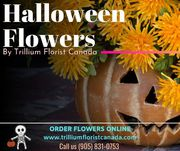 Celebrate 2019 Halloween with Trillium Florist Canada