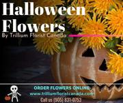 Celebrate 2019 Halloween with Best Flower Shops Toronto