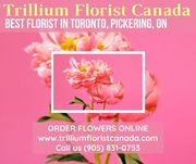 Trillium Florist Canada ~ Best Florist in Toronto,  Pickering,  ON