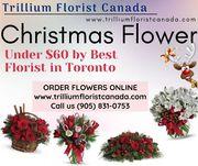 Christmas Flower Canada 2019 Under $60