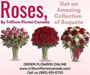 Roses Bouquet in Toronto by Trillium Florist Canada