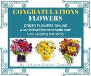 Congratulations Flowers by Trillium Florist Canada
