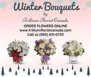 Buy Winter Bouquets in Ontario,  Toronto 2020