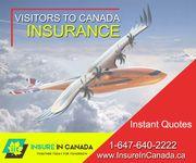 Travel Insurance In Hamilton