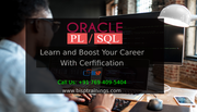 Oracle Fundamentals and PL SQL for beginners Online Training