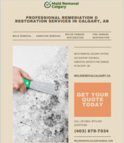 Mold Removal & Water Damage Restoration Company In Calgary